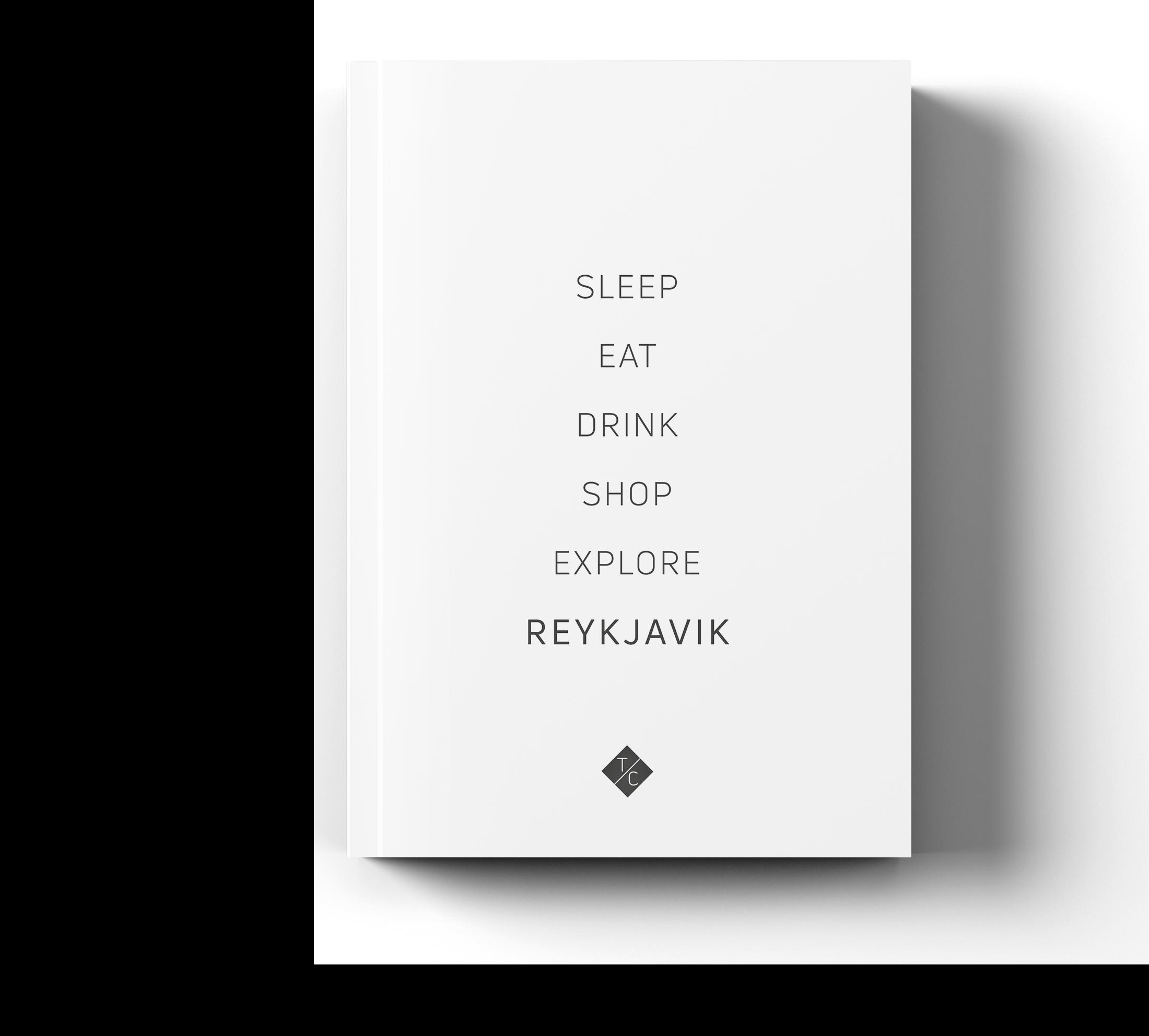 Frontalansicht_Reykjavik